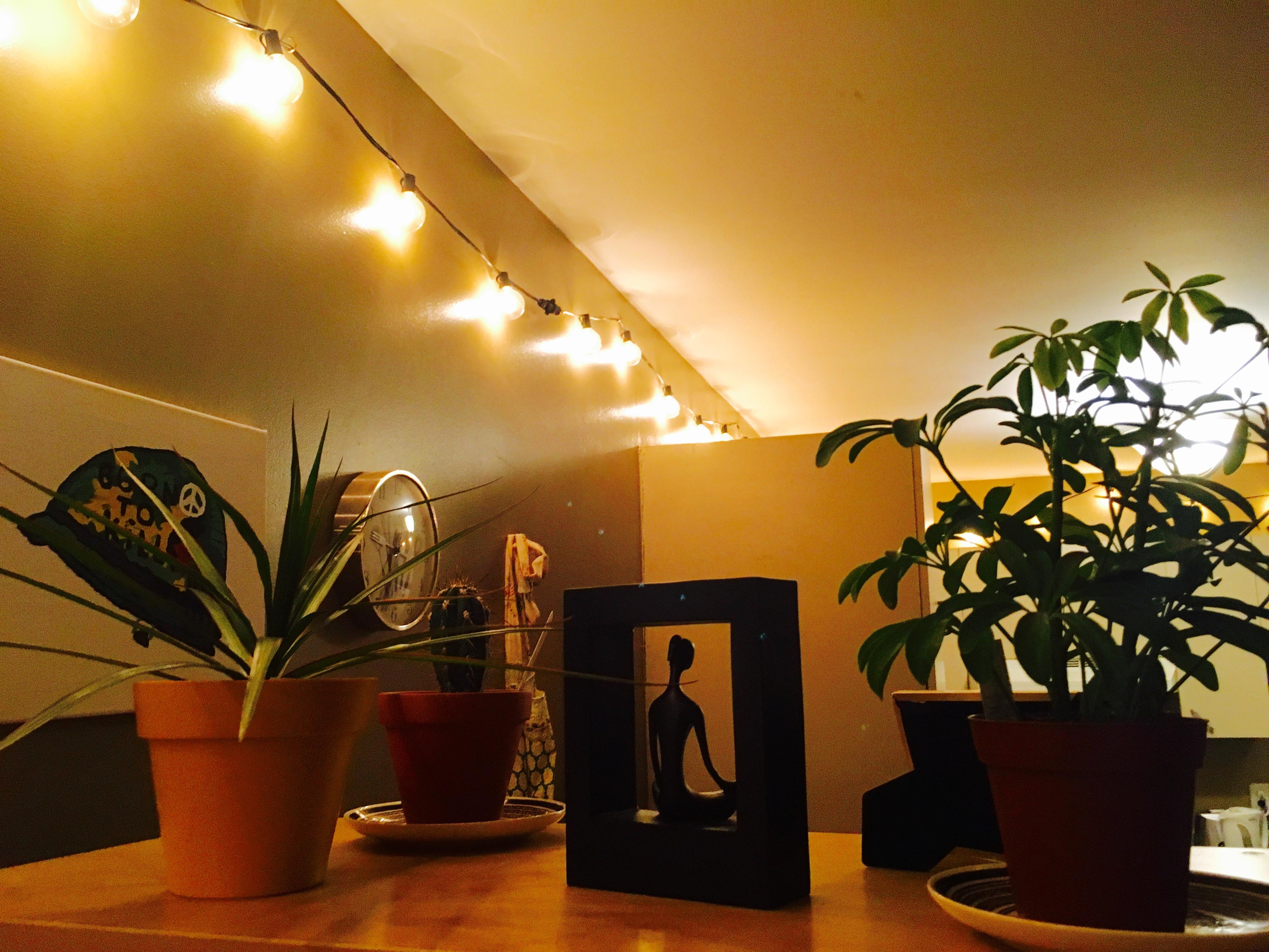 String lights hanging along living room walls